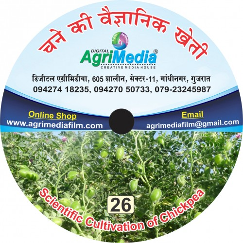 Channe ki vaiganik kheti (Scientific cultivation of Gram)