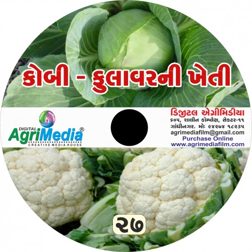 Kobi-Fulevar ni kheti (Scientific cultivation of Cabbage and Cauliflower)