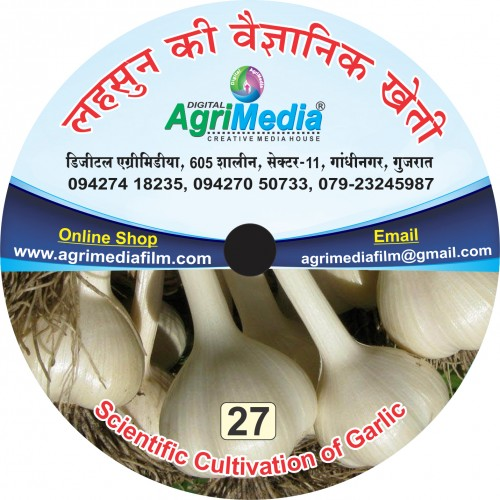 Lahasun ki vaiganik kheti (Scientific cultivation of Garlic)