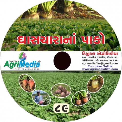 Ghaschara na pako ni Kheti (Scientific cultivation of Fodder crop)