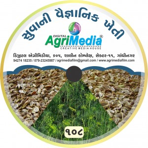 Suva ni vaiganik kheti (Scientific cultivation of Dill seed)