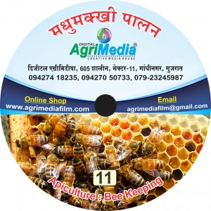 Madhmakhi Palan (Apiculture : Sweet Honey)