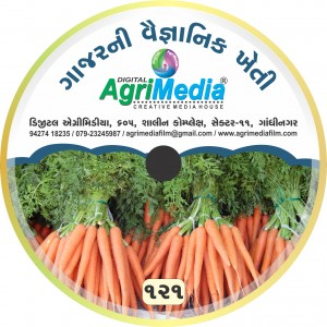 Gajar ni Vaiganik Kheti (Scientific Cultivation of Carrot)