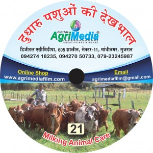 Dudharu Pasuo ki dekhbhal(Milking Animal Care)