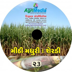 Seradi : Mithi Madhuri (Scientific cultivation of Sugarcane)