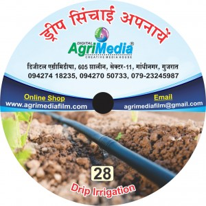 Sichay ki unnat taknik (Care and management of Drip irrigation)