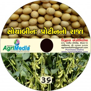 Soyabean : Protein no Raja(Scientific cultivation of Soyabean)