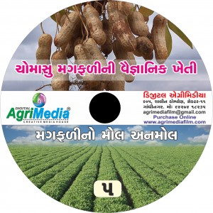 Magfali no mol anomol (Scientific cultivation of Groundnut)