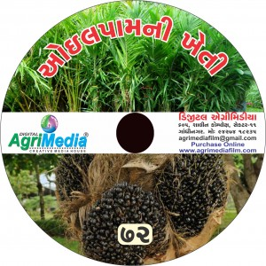 Oilpalm ni kheti (Scientific cultivation of Oil Palm)