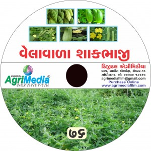 Velavala Sakbhaji ni Kheti (Scientific cultivation of Curbitaceae crop)