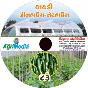 Kakadi : Net /Green house (Scientific cultivation of Cucumber in net/green house)
