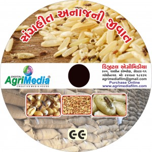 Sangrahit Anaj ni Jivat (Store grain pest and it's management)