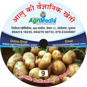Aloo ki Vaiganik Kheti (Scientific cultivation of Potato)