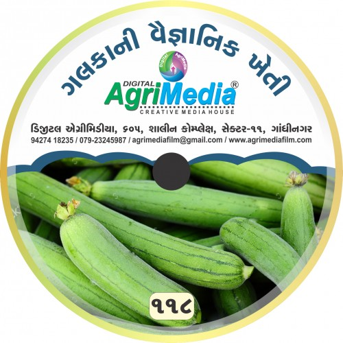 Galka ni Vaiganik Kheti (Scientific Cultivation of Sponge gourd)